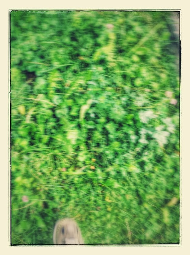 20140816_100514-EFFECTS